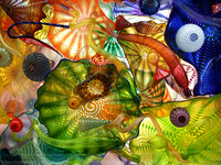 Chihuly Glass Sea Forms 8